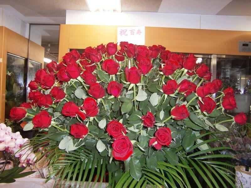 画像1: 薔薇 R-3 (1)
